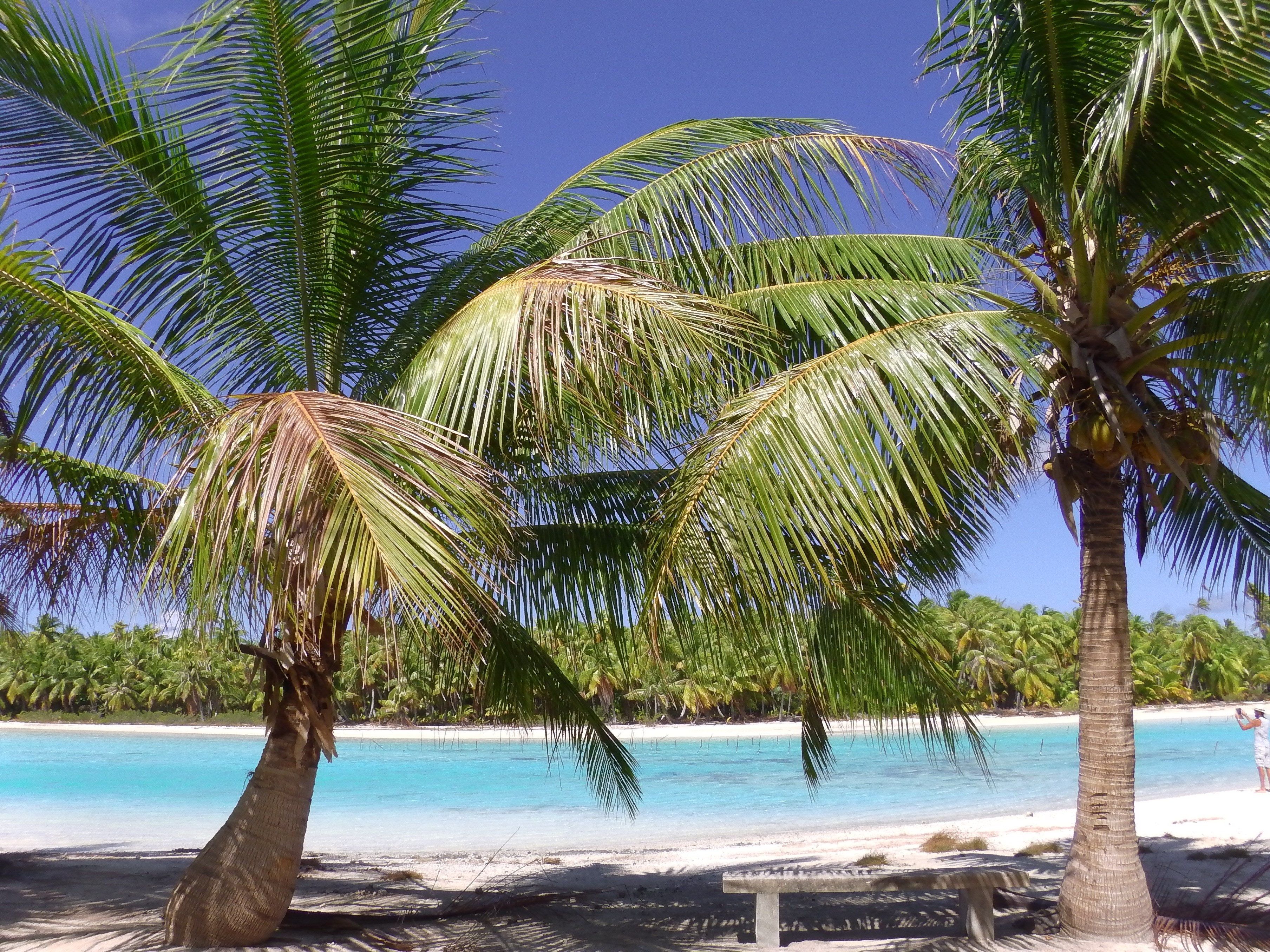 Carnet de voyage – TAHITI – Tout savoir, ou presque, sur la Polynésie française