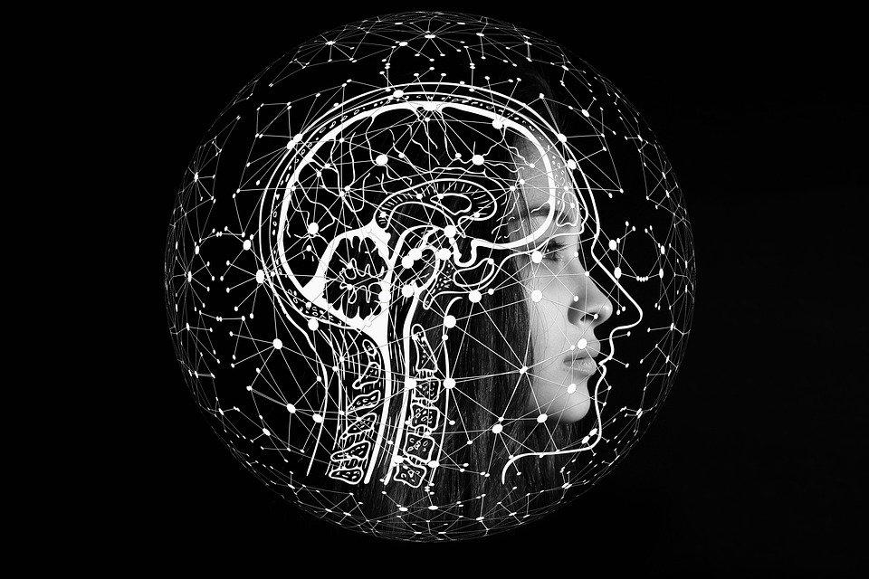 Comment les biais cognitifs déforment notre réalité?