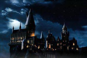 Harry Potter, du génie ou de la magie?